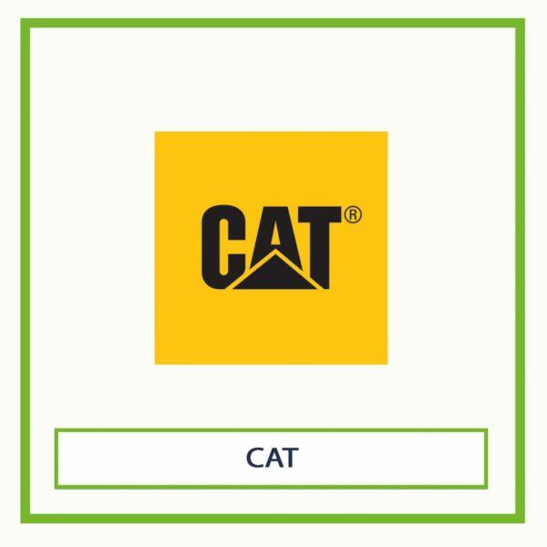 Bedienungsanleitung cat